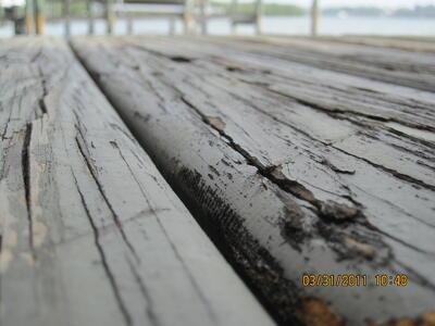 marine construction timber decking