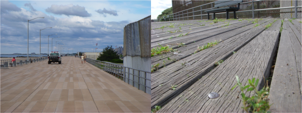 concrete boardwalk and timber boardwalk at rockaway beach