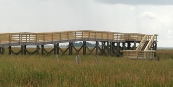 wetland boardwalk observation deck