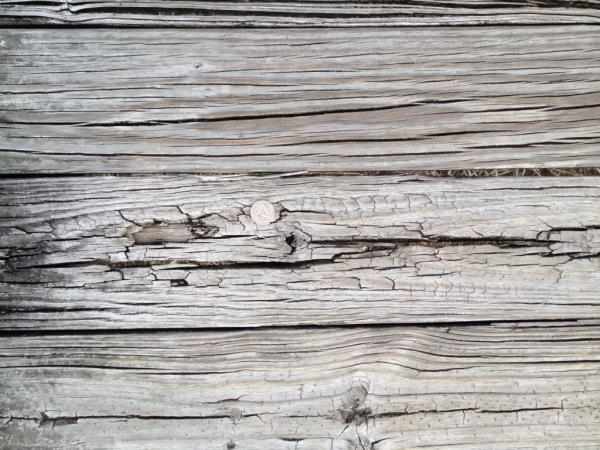 Timber Boardwalk Bike Trail Surface Example 12 Year resized 600