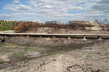 PermaTrak Concrete Boardwalk after bushfire Comet Bay resized 600