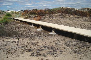 Concrete boardwalk after bushfire comet bay permatrak resized 600