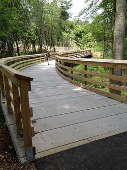 curving boardwalk alignment