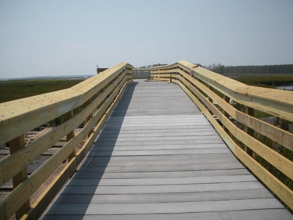 Blackwater Concrete Boardwalk