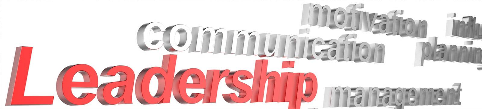 3d-leadership_zkMTU9Hu.jpg