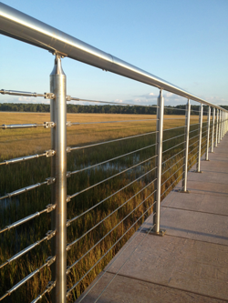 Stainless Steel Railing   Transparent resized 600