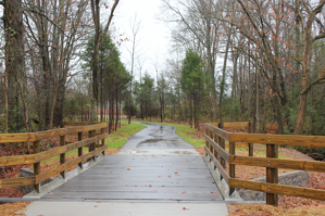 Hurricane Creek Pedestrian Bridge
