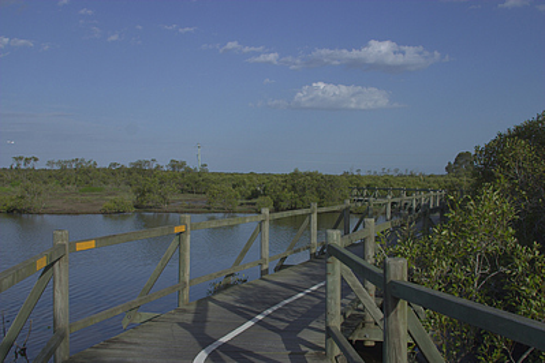 pressure treated timber wetland boardwalk resized 600