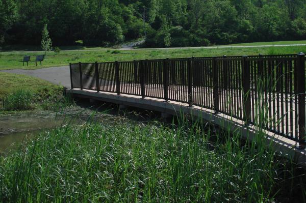 concrete_wetland_boardwalk_beckett_park-resized-600