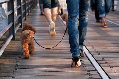 women's heels boardwalk
