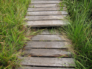 narrow timber boardwalk resized 600