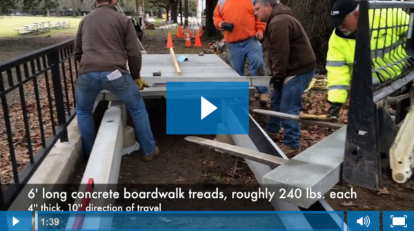 Concrete Boardwalk Installation Over Tree Roots