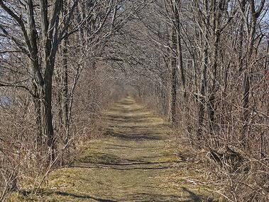 erie-canal-towpath.jpg