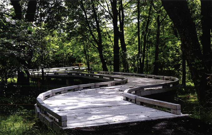 whitpain-concrete-boardwalk-1.png