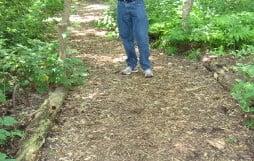 bark mulch path