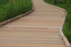 boardwalk-pedestrian-bridge-photos.jpg