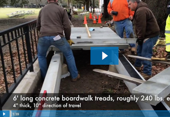 concrete-boardwalk_installation-tree-roots.png