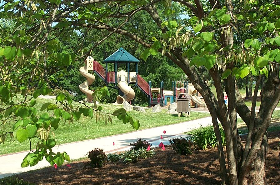 VP Playground (1).jpg