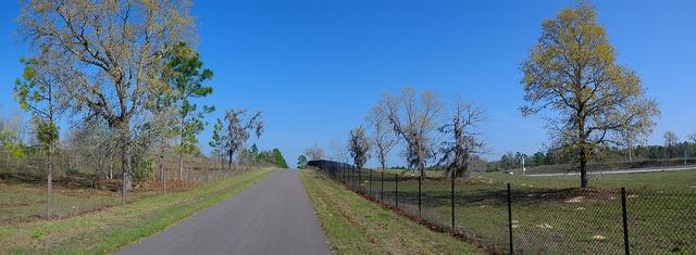 Suncoast_Trail_Hernando_County_Florida