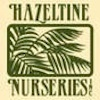 Hazeltine_Nursery