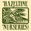Hazeltine_Nursery