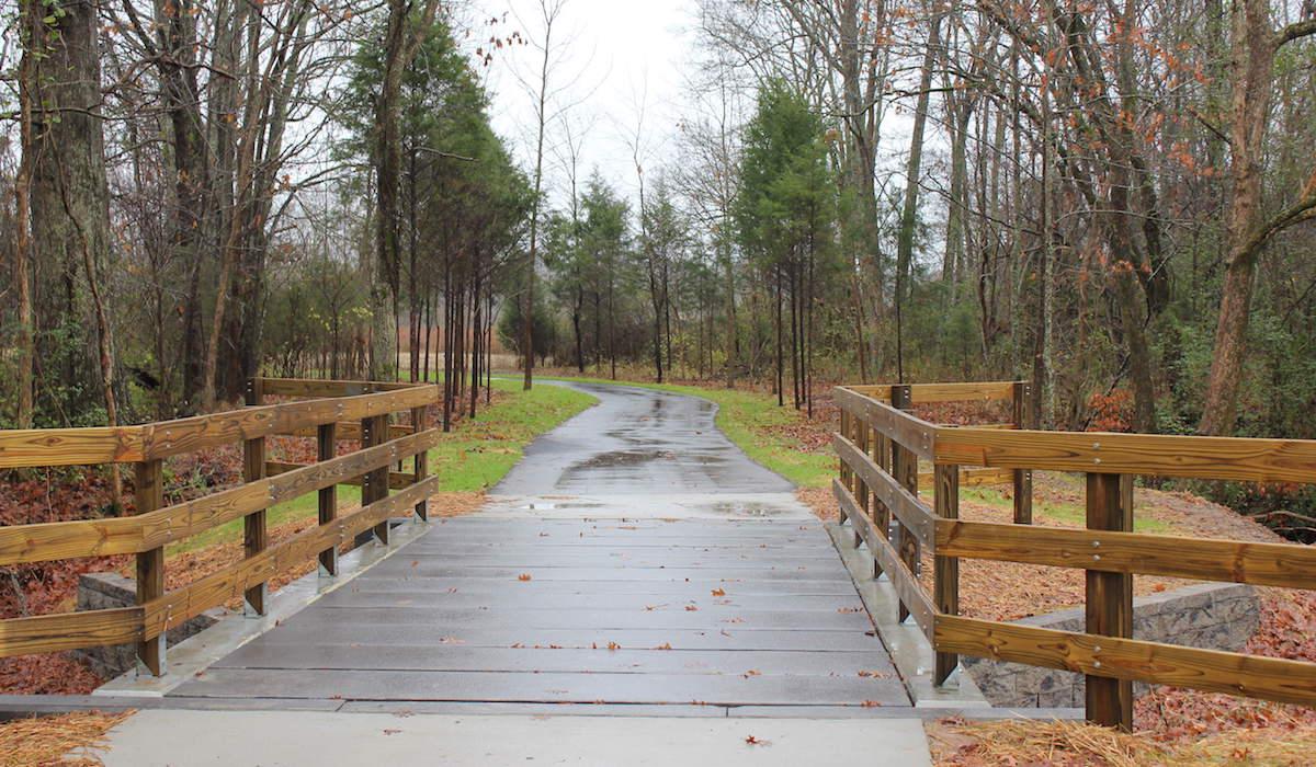 Hurricane-Creek-Pedestrian-Bridge-3.jpg