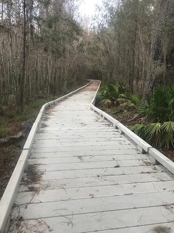 Barr Hammock Concrete Boardwalk