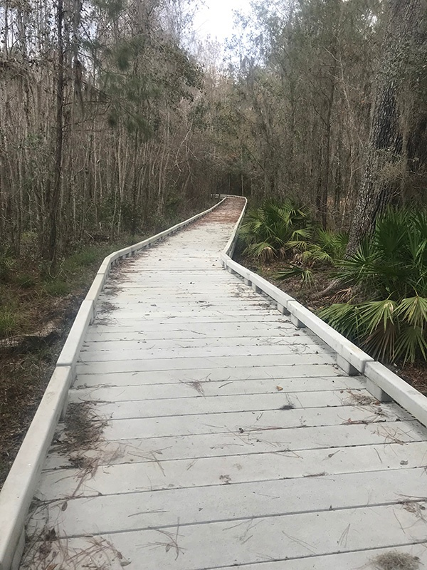 barr-hammock-concrete-boardwalk-2.jpg
