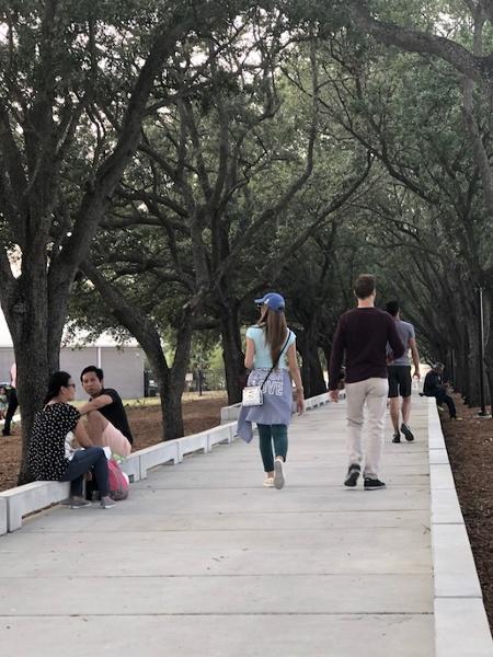 Julian B Lane Concrete Boardwalk