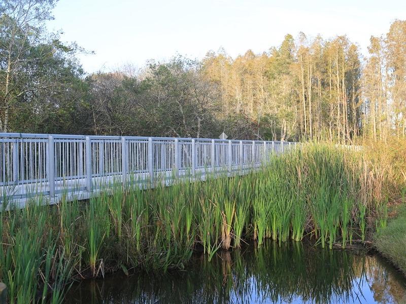 Permatrak Wetland Boardwalk Tampa