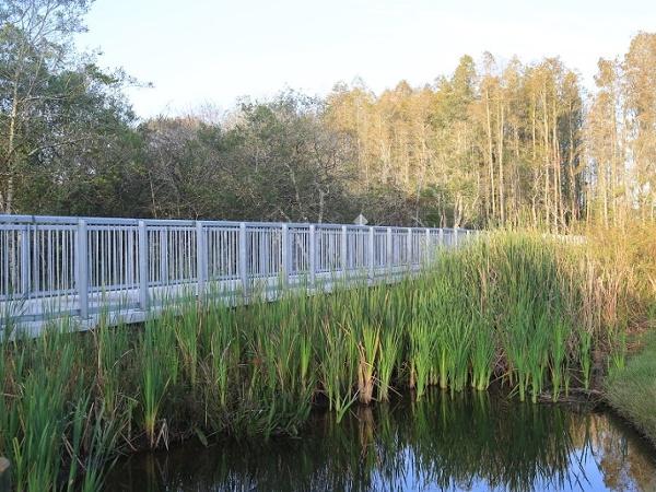 permatrak_wetland_boardwalk_tampa.jpg