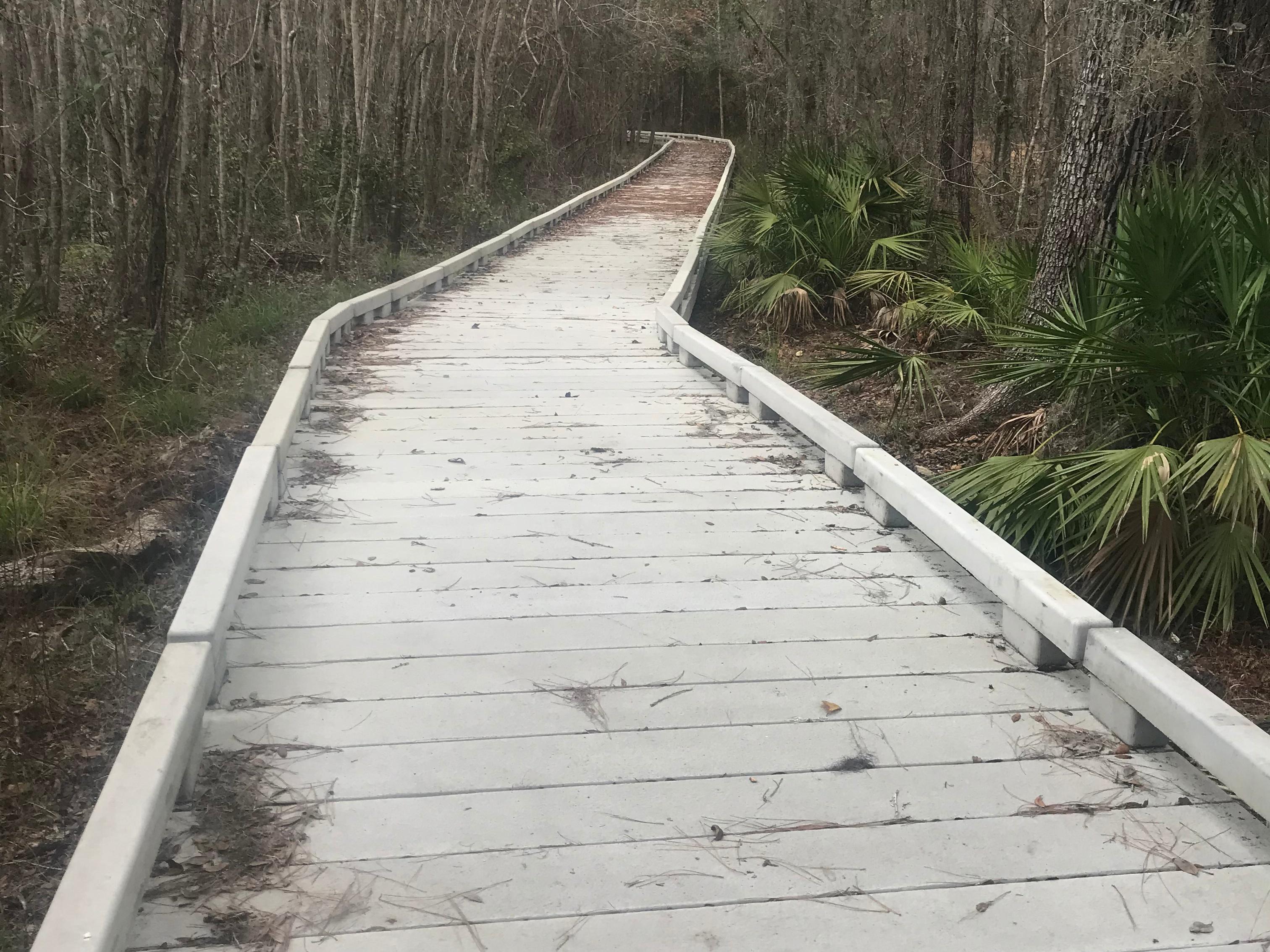 barr-hammock-concrete-boardwalk-800x600